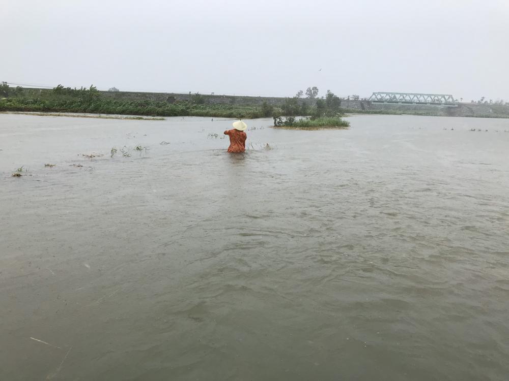 Người dân lội nước sâu thả lưới đánh cá