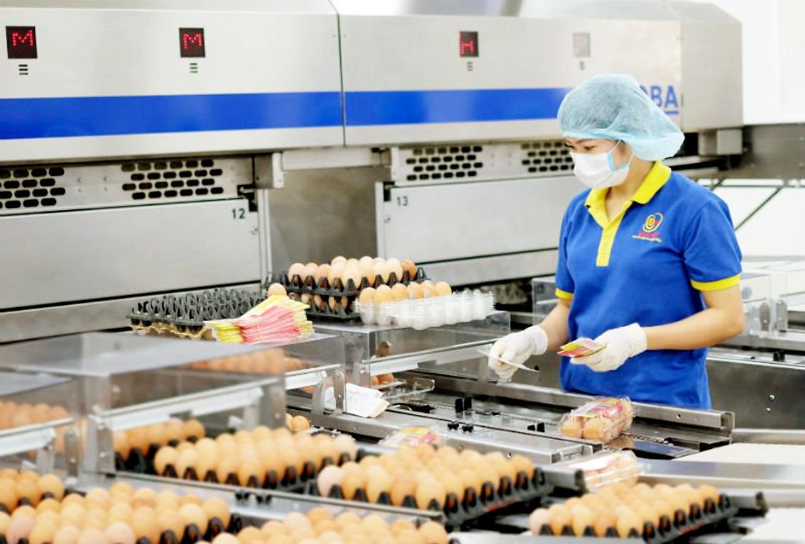 Việt Nam đang đẩy mạnh tiêm vắc-xin cho người dân, ưu tiên hỗ trợ duy trì và khôi phục hoạt động các doanh nghiệp (một khâu sản xuất ở Công ty Ba Huân tại TP.HCM) - ẢNH: T.HOA