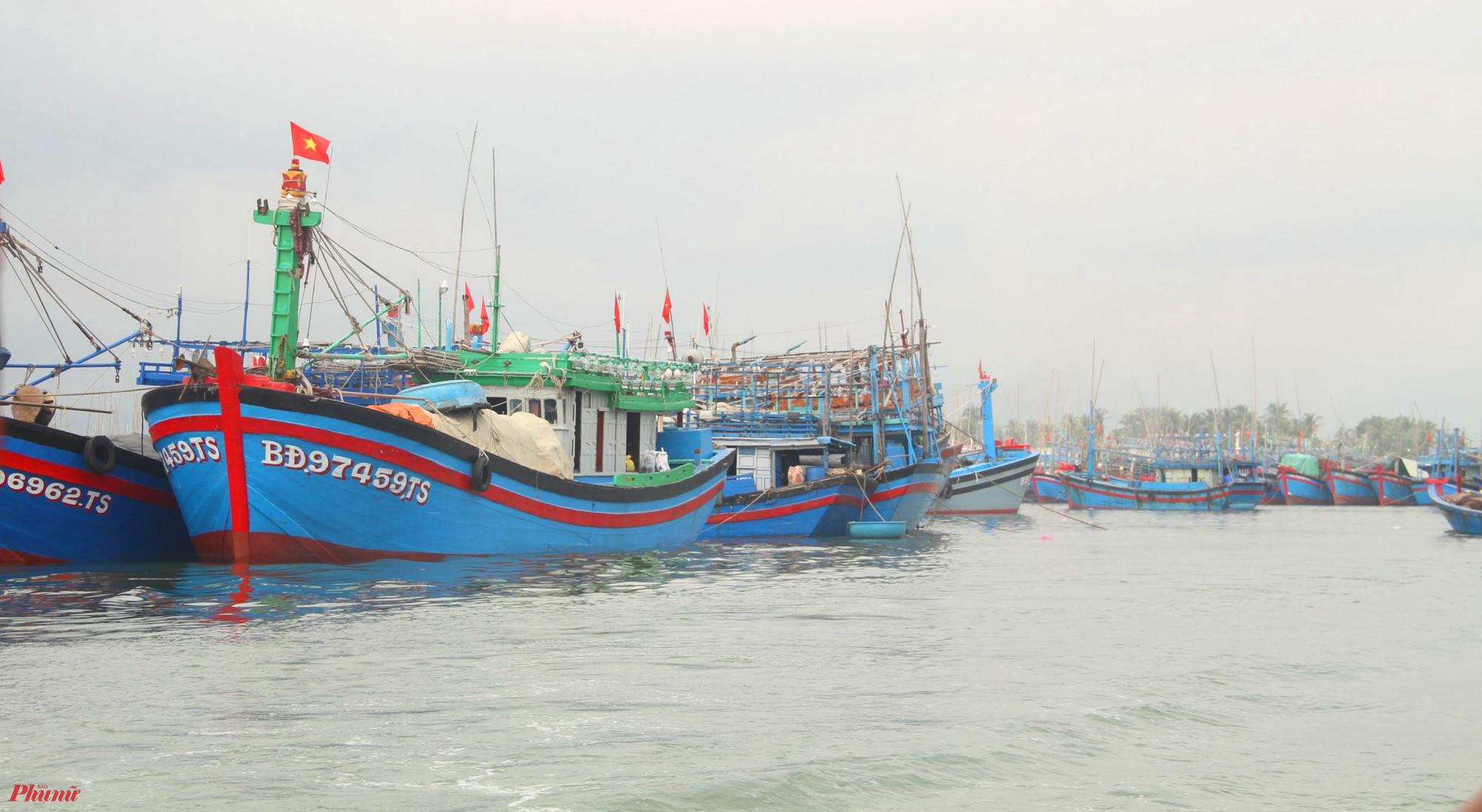 Tàu thuyền vô tránh bão số 6 tại cảng Quy Nhơn
