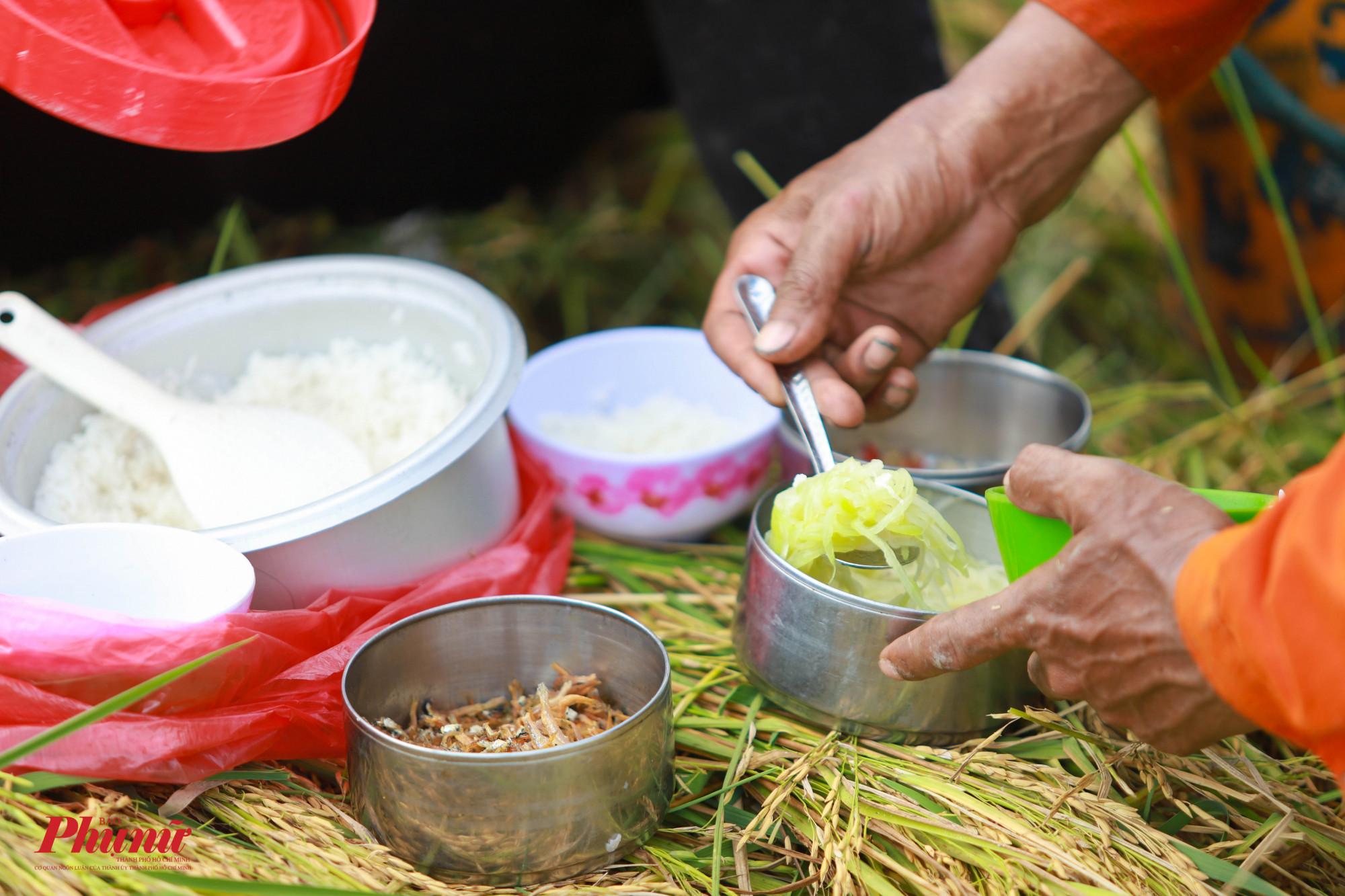 Bữa cơm trưa giữa đồng