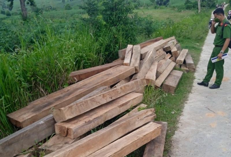 Số khúc gỗ đã được ông Tuất thuê người khiêng ra cất giấu trong các bụi cây trong vườn nhà