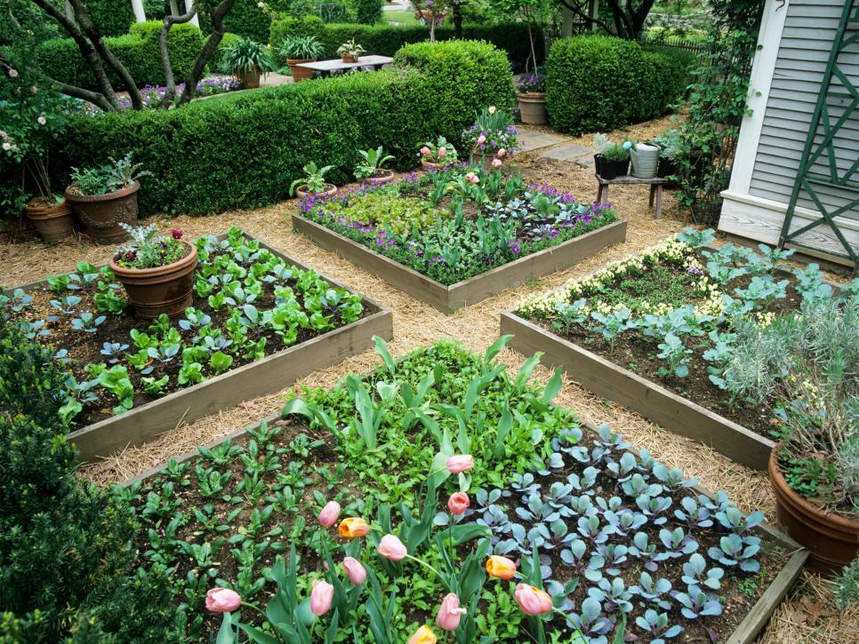 Nhỏ là OK Một số người mới bắt đầu làm vườn cảm thấy sợ hãi về việc trồng một vườn rau tại nhà bởi vì họ cảm thấy như họ không có không gian để làm điều đó. Nhưng bạn không cần một sân rộng để trồng phù du. Bạn có thể tạo một vườn rau năng suất trong các chậu nhỏ trên boong, trên giường cao hoặc thậm chí là ô cửa sổ. Ngày càng có nhiều công ty thực vật cũng đang tập trung vào các loại cây trồng có thể hoạt động tốt trong không gian nhỏ. Khuyến nghị phổ biến cho một vườn rau mới bắt đầu là 10 'x 10' hoặc 16 'x 10' nhưng bạn có thể nhỏ đến 4 'x 4'. Bạn luôn có thể tăng kích thước đó nếu bạn cần cho mùa giải tới.  Ý TƯỞNG THIẾT KẾ CHO MỘT KHU VƯỜN NHỎ: Ý tưởng thiết kế vườn rau