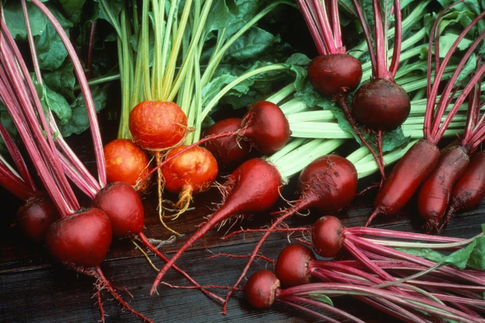 Không trồng quá nhiều Đừng quá tham vọng với khu vườn của bạn và hãy trồng nhiều hơn những gì bạn có thể duy trì hoặc trồng những loại rau mà bạn hoặc gia đình bạn không thực sự thích. Một nguyên tắc nhỏ là trồng không quá năm loại rau trong vườn của bạn.   Người gửi: Lynn Coulter