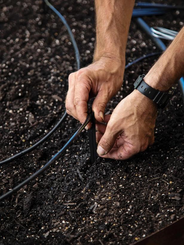 Đất tuyệt vời là quan trọng Đất kết hợp nửa phân trộn và một nửa đất mặt là tốt nhất để trồng rau nhưng nhiều người làm vườn cũng thích trộn thêm đất trồng cây chuyên dụng và một ít phân chuồng. Đất tơi xốp, thoát nước tốt là tốt nhất và vì bạn có thể kiểm soát hỗn hợp đất chất lượng trong các luống cao, nên chúng được khuyến khích hơn so với trồng rau trên đất.  TÌM HIỂU THÊM VỀ CÁCH THIẾT LẬP ĐẤT TUYỆT VỜI: Làm thế nào để chuẩn bị đất cho một khu vườn