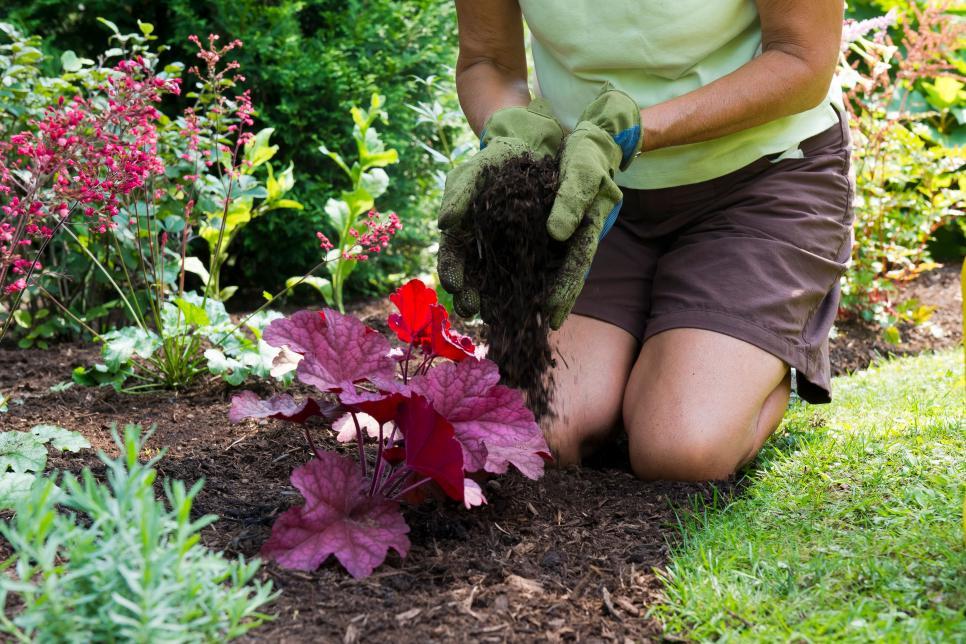 Lớp phủ rất quan trọng Phủ rơm là một bước quan trọng trong làm vườn mà nhiều người bỏ qua. Nhưng lớp phủ không chỉ mang lại cho khu vườn của bạn một cái nhìn gọn gàng, hoàn thiện mà nó còn cần thiết để giúp cây của bạn phát triển mạnh. Lớp phủ rất quan trọng để duy trì độ ẩm cho đất, ngăn ngừa sự thoát hơi nước và che nắng cho cỏ dại, vì vậy đừng bỏ qua bước quan trọng này khi trồng khu vườn của bạn.