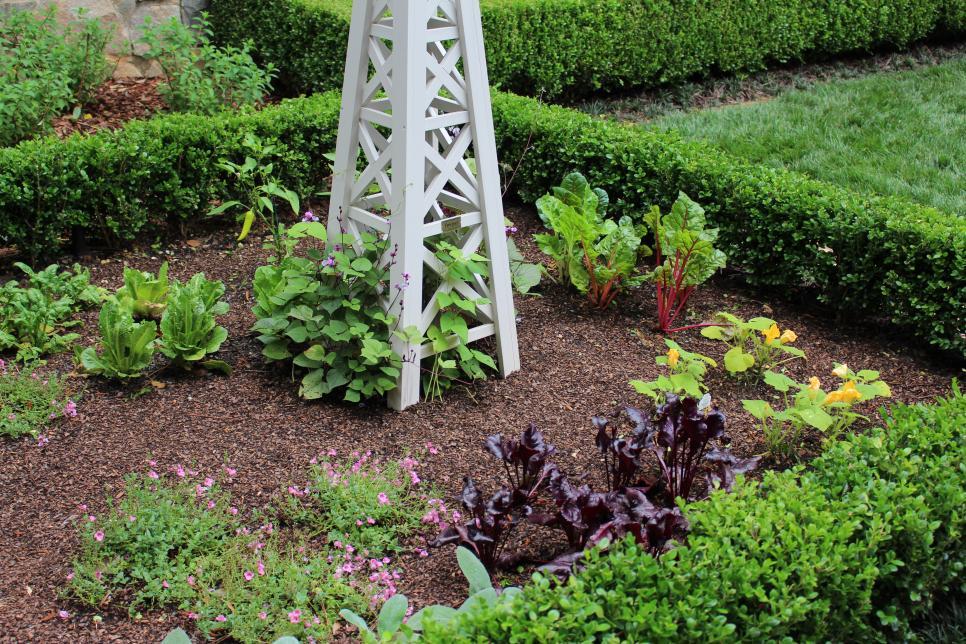 Điều quan trọng tuyệt đối đối với bất kỳ khu vườn thành công nào là biết bạn đang sống ở khu vực nào. Khu vực làm vườn của bạn sẽ xác định bạn có thể trồng cây gì và khi nào. Bạn có thể dễ dàng xác định khu vườn của mình bằng cách truy cập Bản đồ Khu vực Khó trồng Cây của USDA .
