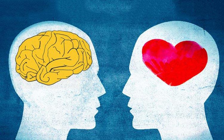 Mặc dù quan điểm chung rằng phụ nữ dễ xúc động hơn và đàn ông lý trí hơn, nhưng thực tế lại hoàn toàn trái ngược. Vỏ não dày có liên quan đến điểm số cao hơn trong nhiều bài kiểm tra nhận thức và trí thông minh nói chung. Và não của phụ nữ có lớp vỏ dày hơn nhiều so với não của nam giới. Trong khi đó, nam giới có khối lượng não cao hơn, đóng một vai trò quan trọng về mặt cảm xúc và đưa ra quyết định.