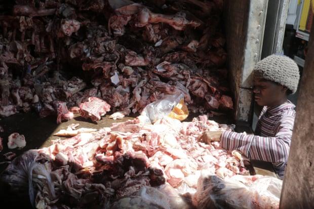 Một người phụ nữ nhặt xác động vật. Ảnh: Domingos Peixoto / Agencia O Globo