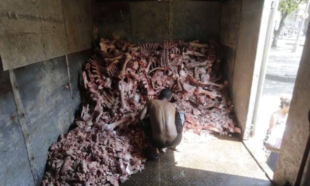 Một người đàn ông nhặt xác động vật để làm thức ăn ở Rio. Ảnh: Domingos Peixoto / Agência O Globo