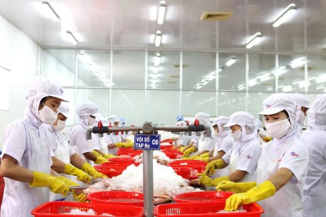 Doanh nghiệp mong các chính sách của Nhà nước nhất quán để tạo điều kiện cho DN phục hồi sản xuất, kinh doanh. (Ành: FFA).