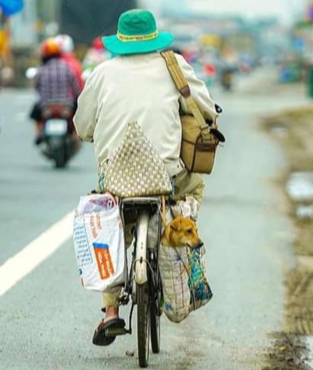 Người dân về quê bằng xe đạp (Nguồn facebook)