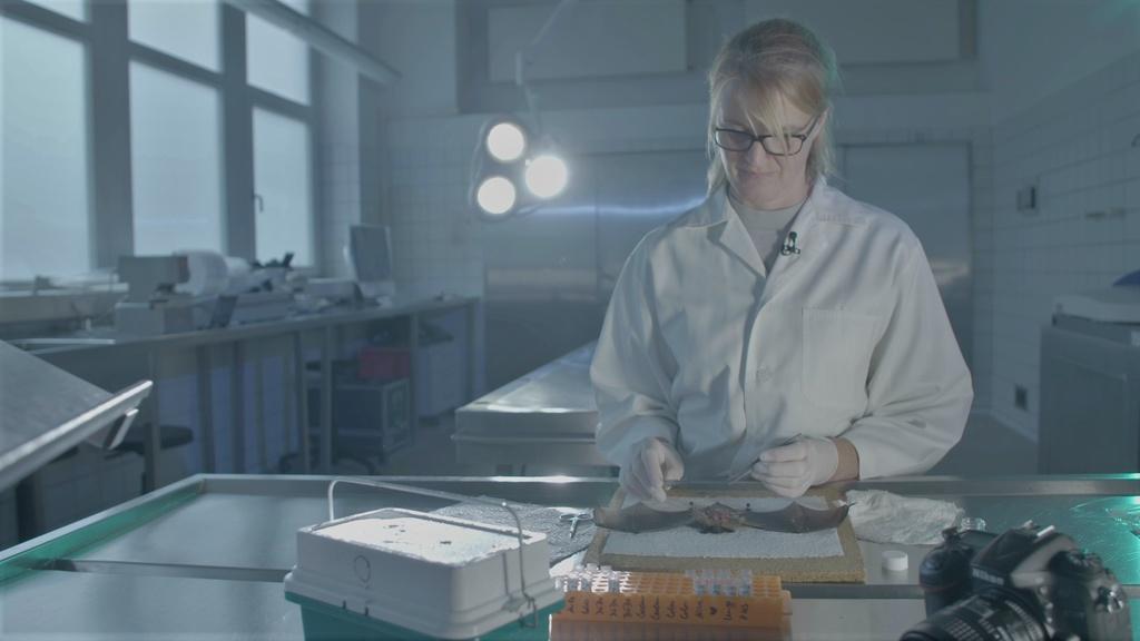 Phim Virus tốt, virus xấu của Đức chiếu tại LHP Khoa học 2021