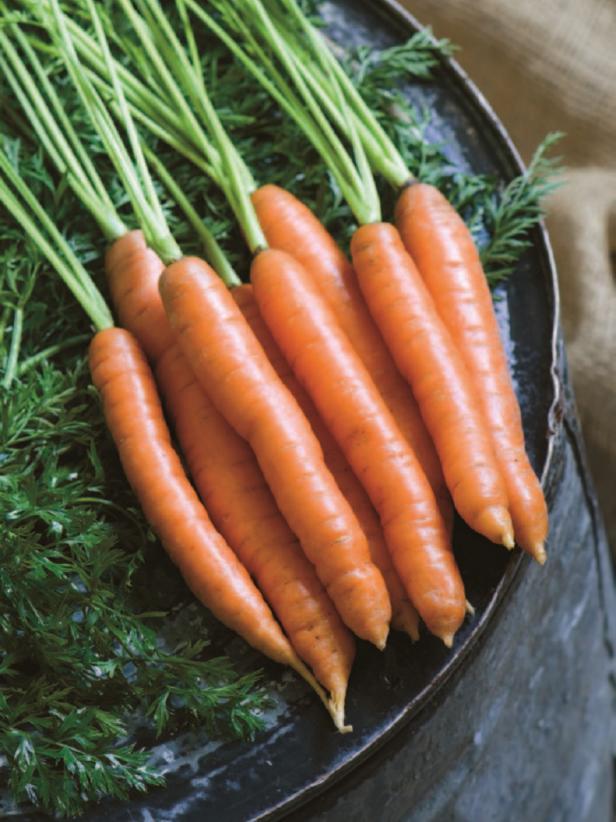 Cà rốt có thể được trồng với nhiều loại thảo mộc bao gồm cỏ xạ hương và húng quế, các loại hoa như cúc vạn thọ, và các loại rau khác như hành tây để xua đuổi sâu bệnh và đảm bảo một vụ cà rốt tốt.