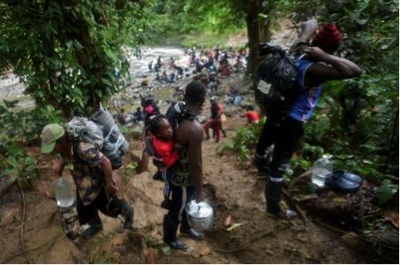 Những đứa trẻ theo cha mẹ di cư qua khu rừng rậm