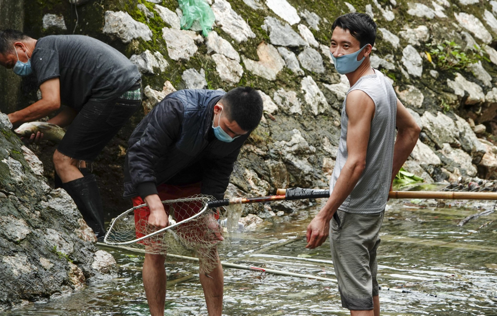 Chỉ trong một giờ đồng hồ có 'cần thủ' câu được gần 5 kg cá.