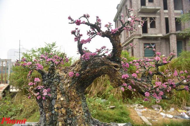 <p>Năm nay, cây đào đá quý này sẽ được đoàn đem bán cùng đào thật tại khu vực Nhật Tân. Cùng với đó, một phần lợi nhuận, chủ nhân cây đào sẽ trích ra làm từ thiện.</p>