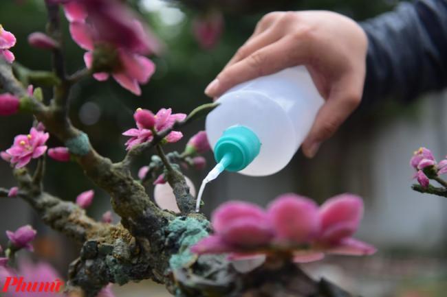 <p>Từng chi tiết hoa, lá, cành đều được gắn thủ công lên trên thân cây.</p>