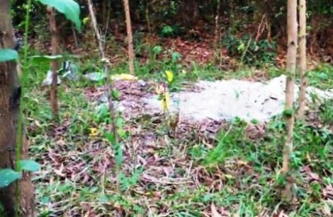 Bí ẩn nào sau ngôi mộ chôn bất thường ở rừng tràm?