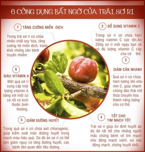 6 công dụng bất ngờ của trái sơ ri