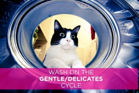 6 mẹo giặt nội y bằng máy hạn chế hư hại