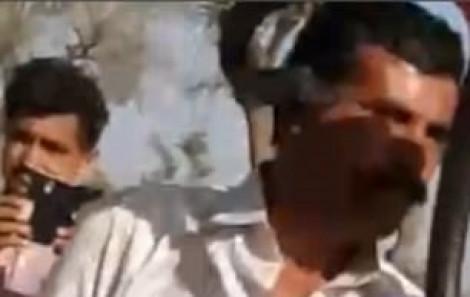 Du khách chết oan vì chụp ảnh tự sướng với rắn hổ mang cực độc