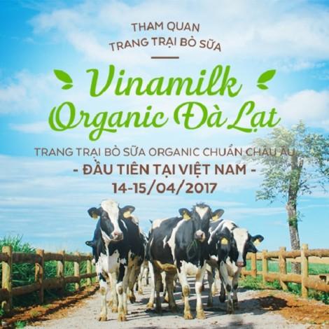15 gia đình may mắn háo hức chuẩn bị hành trình Vinamilk Organic Farm Tour