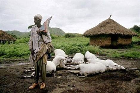 Bí ẩn hồ nước giết người tại Cameroon