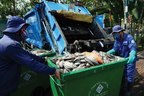 Minh bạch trong đấu thầu thu gom, vận chuyển rác