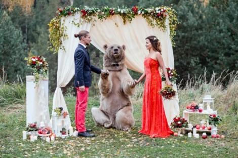 Bộ ảnh nghệ thuật chụp với gấu thật vừa rợn người, vừa đẹp như cổ tích