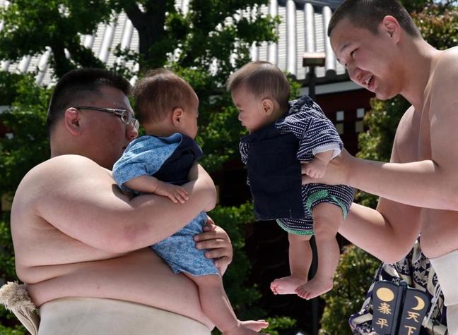 Vo si sumo doa tre con khoc trong ngay hoi ky la o Nhat Ban