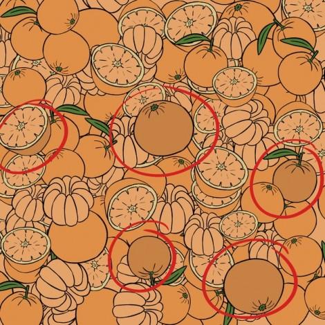 Đáp án tìm trái cam