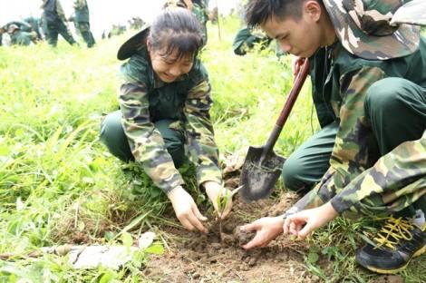 Học kỳ Quân đội và Kỹ năng hè 2017
