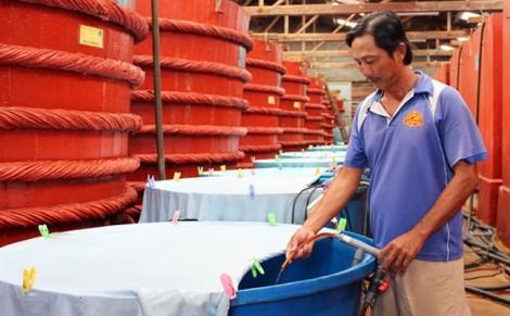 Vụ thông tin sai nước mắm nhiễm Asen: Phạt Vinatas 15 triệu đồng
