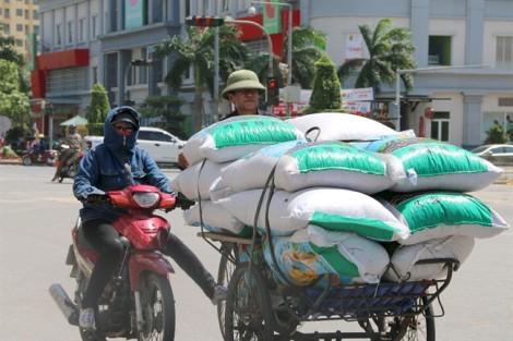 Đồng cảnh ngộ với Hà Nội, người dân thành Vinh vào công viên trốn nóng