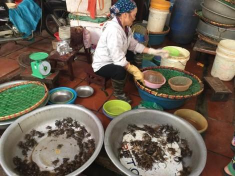 Chợ tăng giá chóng mặt những món hàng giải nhiệt trong ngày nắng nóng Hà Nội