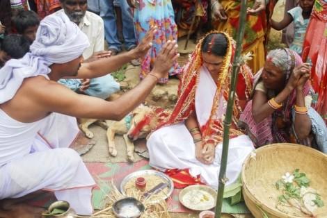 Bị phán là mệnh 'sát phu', thiếu nữ Ấn Độ phải kết hôn với một chú chó