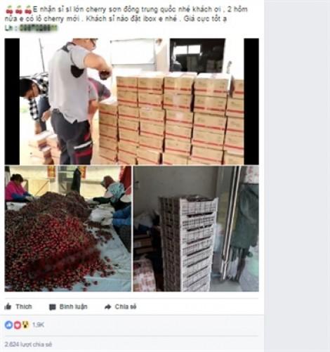Cherry Trung Quốc rẻ bèo 120.000 đồng/kg, dân buôn ráo riết săn hàng