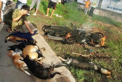 Vụ đánh 'cẩu tặc' trọng thương ở Biên Hòa: Một trong hai kẻ trộm chó bị nhiễm HIV