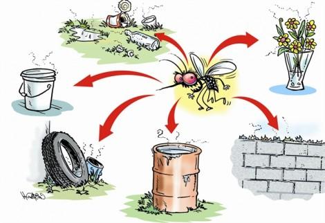 Hà Nội: Bát nháo dịch vụ phun thuốc muỗi