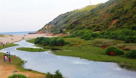 Phú Yên thu phí tham quan Gành Đá Đĩa và Bãi Môn – Mũi Điện
