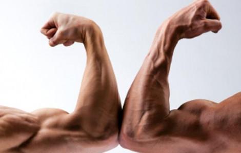 Điểm giống nhau giữa cơ bắp và cuộc đời