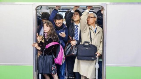 Ikigai – bí quyết hạnh phúc trong cuộc sống căng thẳng của người Nhật Bản