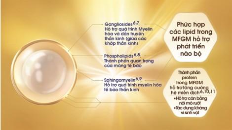 MFGM: bí mật kỳ diệu từ sữa mẹ giúp trẻ phát triển IQ & EQ