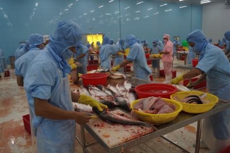 Hàng ngàn doanh nghiệp thực phẩm VN 'mất quyền' xuất khẩu vào Mỹ