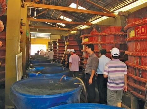 Nước mắm phải dùng muối iod: Làm khó nhà sản xuất, bất cập với người tiêu dùng?