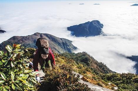 Địa điểm leo núi ở Việt Nam: 3 ngọn núi thách thức mọi trái tim mạo hiểm