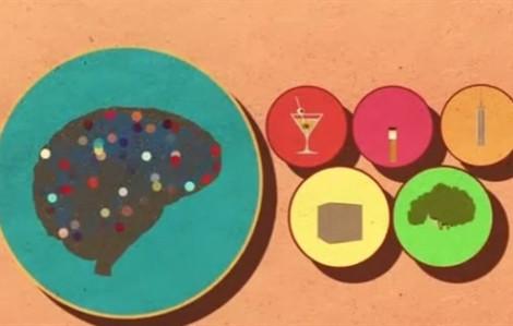 Đường tác động tới não ra sao?