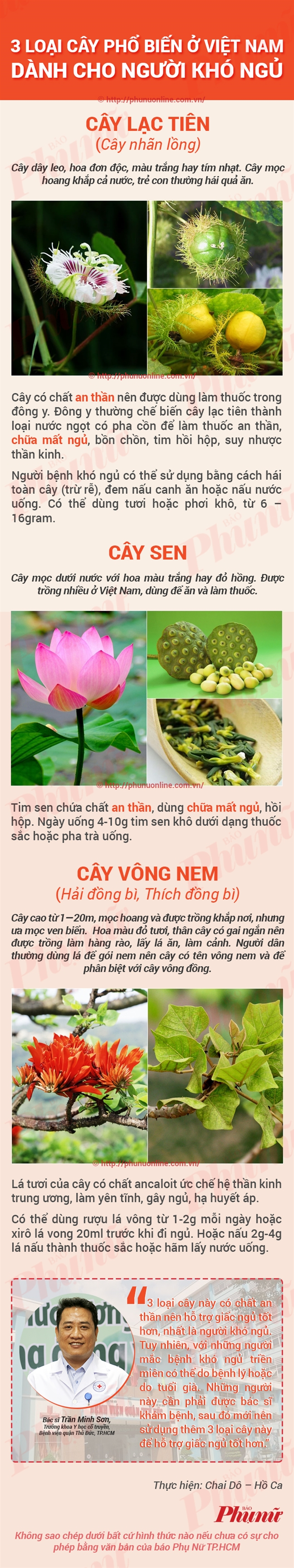 3 loai cay chua mat ngu rat de tim o Viet Nam