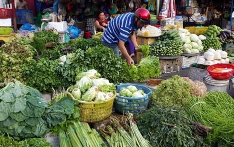 Mưa liên tiếp, nhiều loại rau củ tăng giá