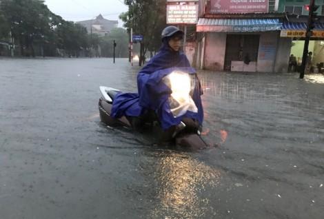 Thành Vinh 'thất thủ' sau mưa lớn, người dân thả lưới đánh cá trên đường